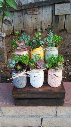 Super cute adorable rustic mason jar succulent arrangement customizable any color