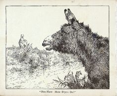 Book of donkeys Fl Usa, University Of Florida, Donkeys, Libraries, Moose Art, Books, Animals, Libros, Animales