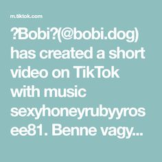🐾Bobi🐾( has created a short video on TikTok with music Benne vagy? Texts, Crushes, Dog, Create, Music, Diy Dog, Musica, Musik, Doggies