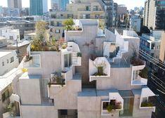 Akihisa Hirata . Tree-ness House . Tokio (1)