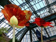 Giant Chihuly Poppies