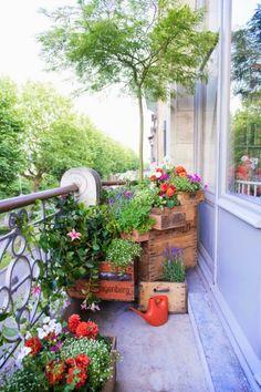 Ideas para utilizar viejas cajas de madera como contenedores de plantas
