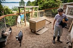 Raising Goats in Your Backyard: Is It Right for You?