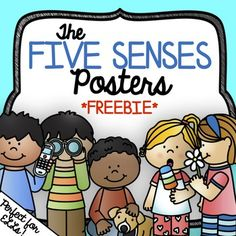 What& Included: 10 Color Five Senses Posters sets* with or without body part labels for ELLs Check out the full product here! Five Senses Differentiated Activities, Vocabulary and Poem Writing Science Area Preschool, Five Senses Preschool, 5 Senses Activities, My Five Senses, Preschool Learning Activities, Kindergarten Science, Preschool Curriculum, Preschool Worksheets, Vocabulary Activities