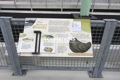 Photo Gallery - Varrobook Interpretive flipbooks in USA exhibits - Interpretive Design Solutions-Exhibit Resources