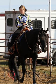 Check out these tips for traveling with your #showhorse. Have you ever wondered how long it takes for your horse to adjust between different climates? Well, wonder no more! #horseshowing. americashorsedaily.com
