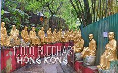 10,000 Buddhas Monastery – Must See in Hong Kong