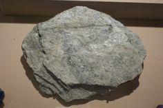 L'orto del Getsemani (l'uomo è ciò che mangia): Il magnesio