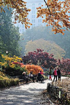 This is my favorite time to be in nyc Autumn In New York, Nyc Fall, Places To Travel, Places To See, A New York Minute, Places In New York, Empire State Of Mind, I Love Nyc, Destinations