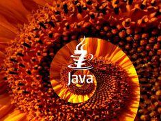 Java Roll