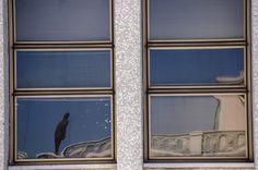Terraço do Edifício Martinelli e obra de Gormley, no reflexo