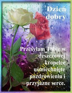 German Language, Street Art, Flowers, Plants, Den, Rose, Inspiration, Polish Sayings, Morning Sayings
