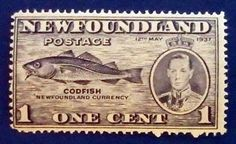 #timbre #stamp #znamky #philatelie #philately #filatelia Cod Fish, Newfoundland, Stamp, Personalized Items, Door Bells, Cod, Stamps, Newfoundland Dogs, Atlantic Cod