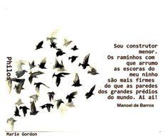 Coisas de Terê - Manoel de Barros - 2014 - Poeta Brasileiro.