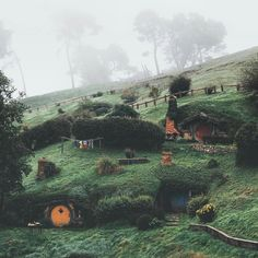 Land of the Hobbits 🍃