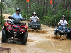 Great Fun in the Ocala National forest riding 4-Wheelers with friends - On my bucket list!