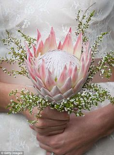 The bride wanted every single detail of her nuptials to be perfect. Protea Wedding, Wedding Bride, Floral Wedding, Wedding Cards, Wedding Bouquets, Our Wedding, Wedding Stuff, Enchanted Forest Wedding, Woodland Wedding
