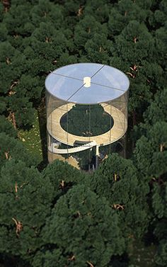 Literal Treehouse Is A Glass House Built Around An Entire Tree Tree in House: Glass Cylinder Wraps Five-Story Fir in Forest Green Architecture, Amazing Architecture, Contemporary Architecture, Landscape Architecture, Landscape Design, Architecture Design, Architecture Interiors, Unusual Homes, Amazing Buildings
