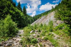 Cascada Varciorog, Arieseni  Turist in Romania : cascada Varciorog din Arieseni - galerie foto.  Vezi mai multe poze pe www.ghiduri-turistice.info