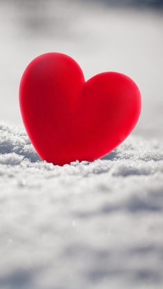 Super Wallpaper Ideas for Valentine's Day - Page 51 of 200 - CoCohots Love Heart Images, Love You Images, Heart Pictures, I Love Heart, Heart Wallpaper, Love Wallpaper, Cellphone Wallpaper, Colorful Wallpaper, Heart In Nature