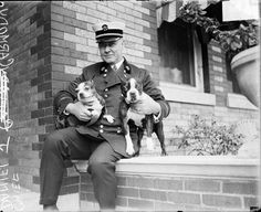 Fire Chief with two Boston Terriers