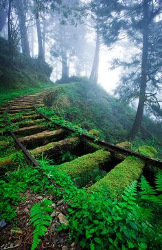 click through for 33 more breathtaking and incredible photos of abandoned places- this is the Jiancing Historic Trail in Taipingshan National Forest in Taiwan.