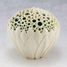 Lotus iluminada