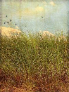 unknown by Jamie Heiden Abstract Landscape, Landscape Paintings, Encaustic Art, Watercolor Art, Photo Art, Nature Photography, Illustration Art, Images, Fine Art