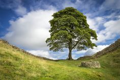 Hadrian's Wall | 17 British Landscapes That Are So Beautiful You'll Want To Cry
