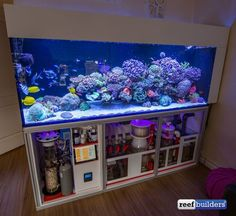 Saltwater Aquarium - Find incredible deals on Saltwater Aquarium and Saltwater Aquarium accessories. Let us show you how to save money on Saltwater Aquarium NOW! Diy Aquarium, Aquarium Design, Aquarium Marin, Aquarium Sump, Coral Reef Aquarium, Marine Aquarium, Aquarium Fish Tank, Aquarium Ideas, Saltwater Aquarium Setup