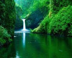 nature pictures - Google Search