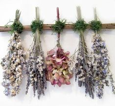 Create a whimsical, delicate bouquet with beautiful dried flowers for a rustic or vintage-inspired wedidng. The muted pastels and earthy textures of dried flowers. Decoration Evenementielle, Decorations, Hanging Herbs, Deco Nature, Dried Flower Arrangements, Arte Floral, Vintage Roses, Shabby Vintage, Potpourri