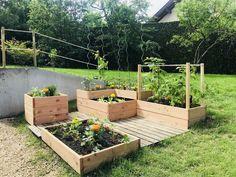 Ideas Home Exterior Green Plants Homestead Gardens, Backyard Vegetable Gardens, Garden Makeover, Plantation, Green Plants, Land Art, Garden Beds, Horticulture, Garden Inspiration