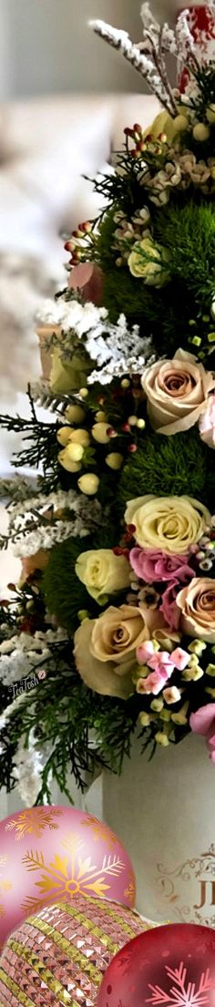 ❈Téa Tosh❈ #Christmas #teatosh 79b Red Christmas, Christmas Themes, Box Roses, Color Boards, Heavenly, Bouquets, Florals, Floral Wreath, Ballet