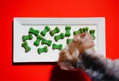 Healthy gluten free apple mint treats recipe for dogs #healthy #glutenfree #recipe