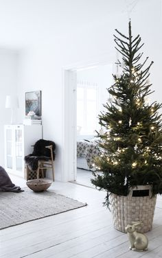 ♥ Love the big basket to hold tree. I guess you could put tree in bucket of water and then into basket and avoid spending money on awkward tree stand.