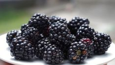 SHARE THIS PAGE Can you eat fruit on a ketogenic diet? In short, it's best to avoid most fruits except for berries, which you can eat in moderation. Below, we'll take a look at some of the fruits you can eat on a I Lak, Benefits Of Berries, Keto Fruit, Healthy Fruits, Healthy Skin, Healthy Eating, Micro Nutrients, Blackberry Cobbler, Bowl Of Cereal