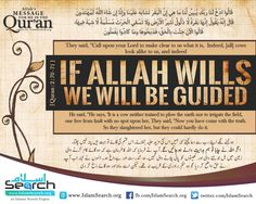 Quran:2:70-71 - Allah's message for me in the Quran - Series by IslamSearch.org - an Islamic Search Engine Download all Quranic Posters : http://islamsearch.org/quranic-posters.html