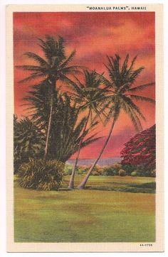 Vintage Hawaii Sunset, Moanalua Gardens Hawaiian Sunset, Hawaiian Art, Vintage Hawaiian, Tropical Colors, Tropical Art, Tropical Paintings, Vintage Surf, Vintage Prints, Vintage Postcards