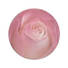 A Flower For My Love Pink Rose Coaster
