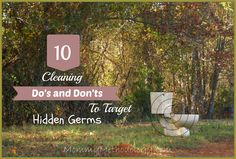 10 #Cleaning Do's and Don'ts to Target Hidden Germs | Tackle those pesky hidden germs with 10 Cleaning Do's and Don'ts in a simple, non-toxic way; cutting down on allergens or worse. Read more @ mommymethodology.com