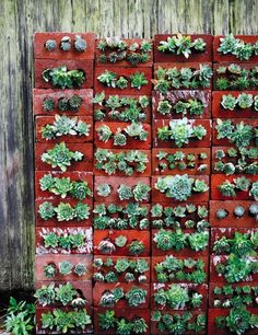 vertical brick garden