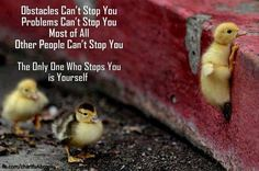 Don't give up!!! #Motivation #Inspiration #Determination #Workout #Exercise #ClubFit247 #Jericho #LongIsland #JerichoNY #LiveFit