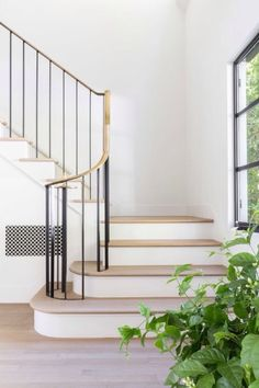 Wood stairs with white risers.