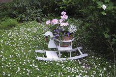 #Blütenträume im Garten, Haus Midsommer, Timmendorfer Strand
