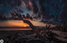 76 of 365  03/17/2013  Discovery Park sunset    My favorite park in Seattle. It's tough to beat a sunset from this spot.     This is 25 18mm photos stitched.    Like on Facebook  http://facebook.com/shoottheskies  Shoot The Skies Post   http://www.shoottheskies.com/post/45819431134/76  Twitter  http://twitter.com/shoottheskies