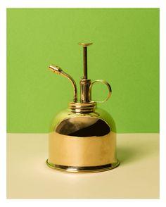 Elégant petit vaporisateur de 300 ml, en laiton, parfait pour arroser les petites plantes ou les filles de l'air.