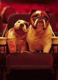 Frank & Tula...lol.