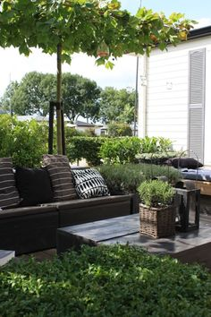 Langius design  ...include a fire pit for food, warmth, and conversation...wonderful setting just outside your garden.