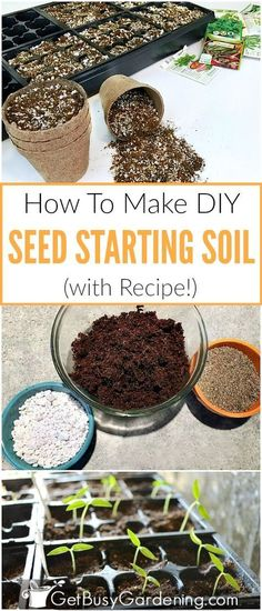 This easy homemade seed starting mix has only 3 ingredients: 8 parts coco coir (. - This easy homemade seed starting mix has only 3 ingredients: 8 parts coco coir (or peat moss), 1 pa - Garden Soil, Garden Seeds, Planting Seeds, Planting Plants, Germinating Seeds Indoors, Potted Plants, Growing Tomatoes In Containers, Growing Vegetables, Starting Seeds Indoors